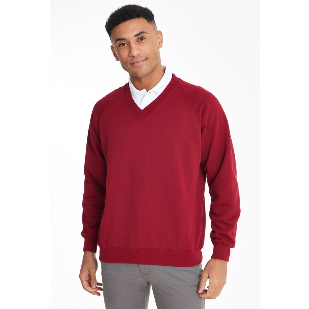 Image 1 of Coloursure™ v-neck sweatshirt