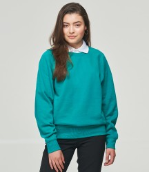 AWDis Academy Raglan Sweatshirt image
