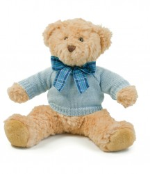Mumbles Teddy Jumper image